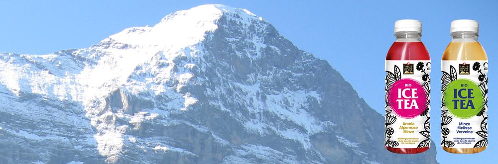 Swiss Alpine Herbs Ice Tea